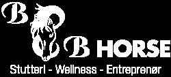 BB Horse